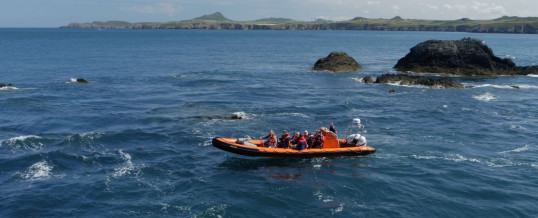 Voyages of Discovery – Ramsey Island Boat Trips